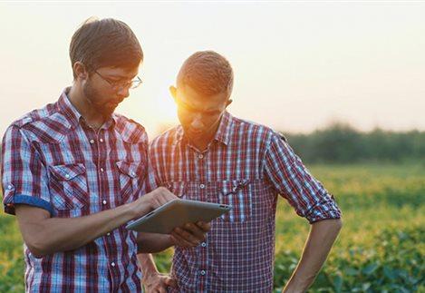 Οι 9 στους 10 Νέοι Αγρότες μετάνιωσαν για την επιλογή τους